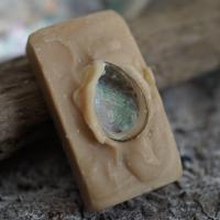 Honig-Vanille-Rechteck mit einer Paua-Schnecke
